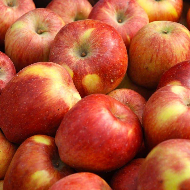 Gratis appels