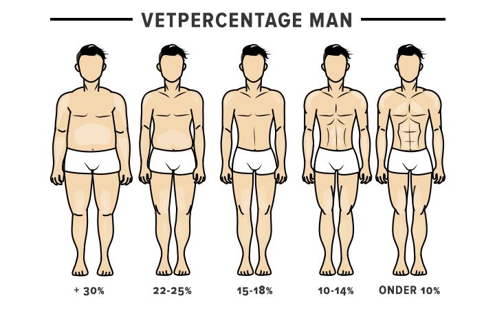 Vetpercentage bij mannen