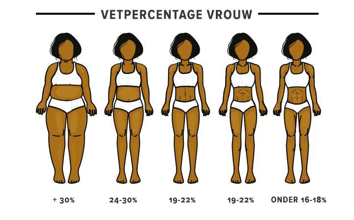 Vetpercentage bij vrouwen
